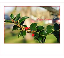 holiday card Photographic Print