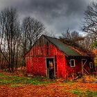 An old barn by Evelina Kremsdorf