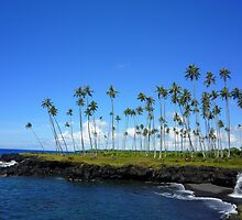 an awesome Samoa  landscape by beautifulscenes