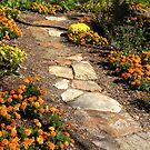 Garden Path by Rosalie Scanlon