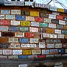 License Plates at Hole in The Rock, Utah by bigjason56