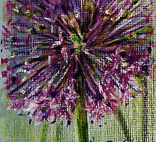 Ilium,purple Globe flower by jimmie