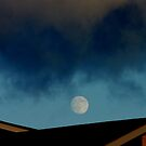 Mooning Roofs.... by Larry Llewellyn