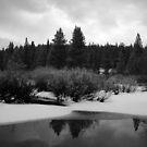 Snowfall-Trout Creek by CherylBee