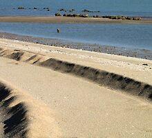 Coastal ridge by Hélène David-Cuny