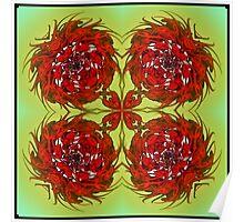 Xmas Roses Poster