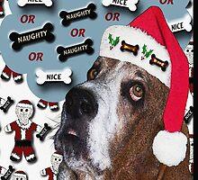 A Basset Christmas by Terri Chandler