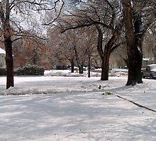 Snow-covered Yards by sandycarol
