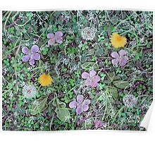 'Dandelions & Clover (Ground Cover #2)' Poster