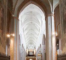 The Turku Cathedral by Markku Vitikainen