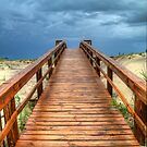 Into The Storm by Tammy Wetzel