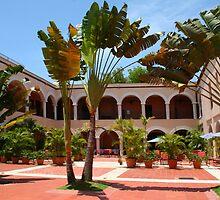 Hotel SOFITEL Ovando in Santo Domingo, The Dominican Republic by Atanas Bozhikov