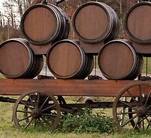Vineyard transport carriage. by trainmaniac