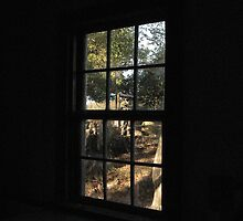 Old Cabin on the River 8 - From the Inside Out© by walela