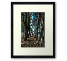 Pepeekeo Point, Hawaii Framed Print