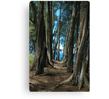 Pepeekeo Point, Hawaii Canvas Print