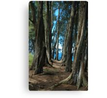 Pepeekeo Point, Hawaii Canvas Print
