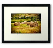 Golden Hay Bales Framed Print