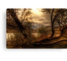 Sneak a Peek at the Snake River  Canvas Print