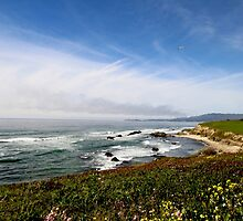 Half Moon Bay 2 by itsallrelative
