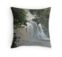 Chia Aig Falls 3 Throw Pillow