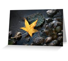 Looking Beyond the Big Picture Greeting Card