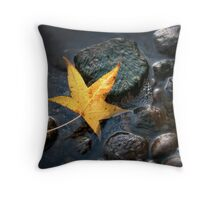 Looking Beyond the Big Picture Throw Pillow