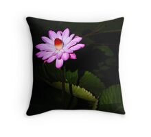 Beauty from the shadows Throw Pillow