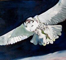Snowy Owl by Miles Histand