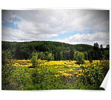 Vernonia Oregon Landscape Poster