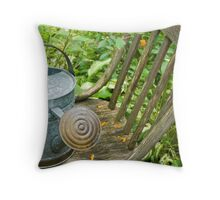 Allegheny Water Can Throw Pillow