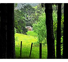 House in the Woods Photographic Print