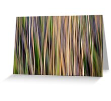 Grasslands Greeting Card