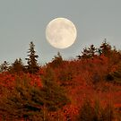 Autumn Moon by LifeInMaine