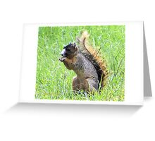 Tails Up Greeting Card