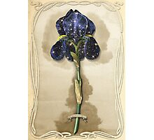 Night Iris Photographic Print