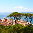 Postcard from Saint Tropez, Southern France by Digital Editor .