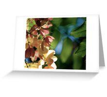 Slightness... Kauai Sensual Series Greeting Card