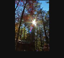 Sun Shining Through the Autumn Trees Unisex T-Shirt