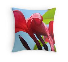 Soft Red Petal duo Throw Pillow