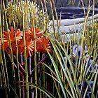 The Water garden by Elizabeth Moore Golding