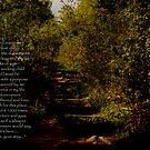 Secret Garden-Beacon Hill, Newbury, England by Wayne Cook