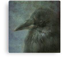 Beautiful Raven Canvas Print