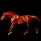 Fiery Night Rider by laureenr