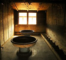 Washroom From Hell by James Prutilpac