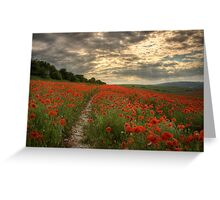 Poppies Sunset - South Downs Sussex Greeting Card