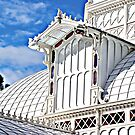 The Conservatory of Flowers by ronda chatelle