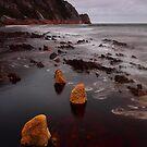 Rocky Cape National Park by Donovan Wilson