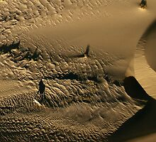 Oryx shadow | Skeleton Coast by Olwen Evans
