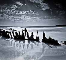 Fading In The Shadows by Matthew Stewart